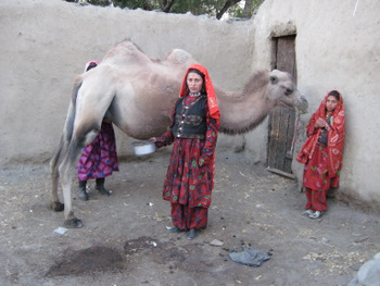 Wakhan Woman and Camel