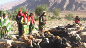 Wakhan Corridor Herding